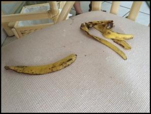 The monkey left the peels