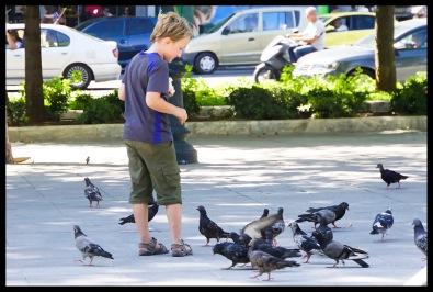 Feeding the birds in Syntagma Square