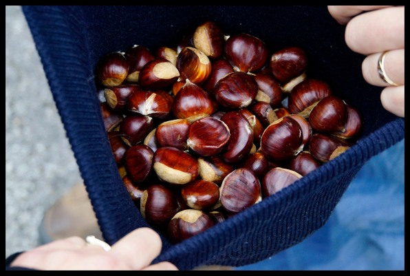 Hatfull of chestnuts