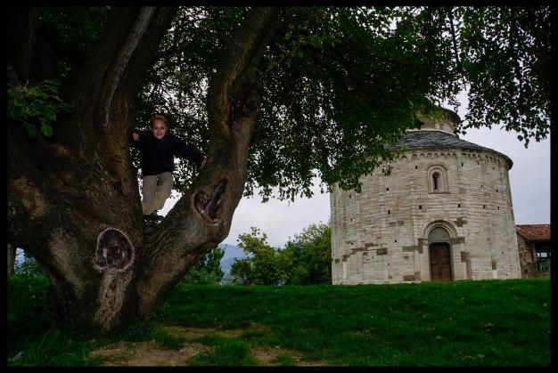 I can climb a tree!