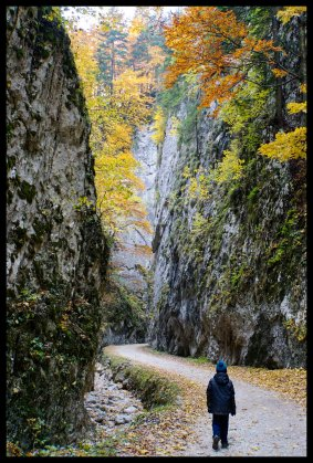 Giant gorge in Piatra Craiului National Park