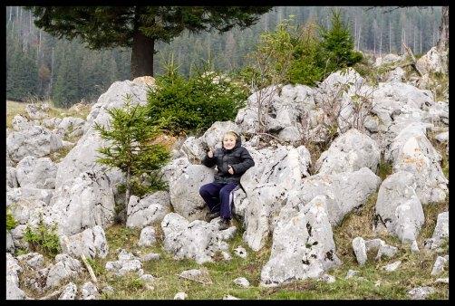 Rock pile - Piatra Craiului National Park