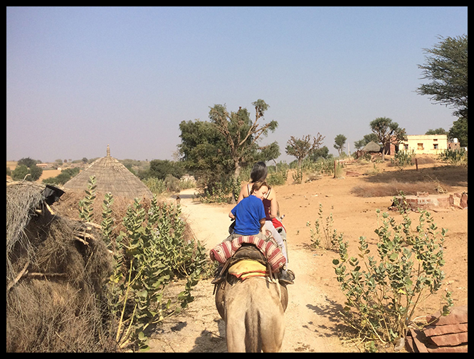 Back view of camel ride