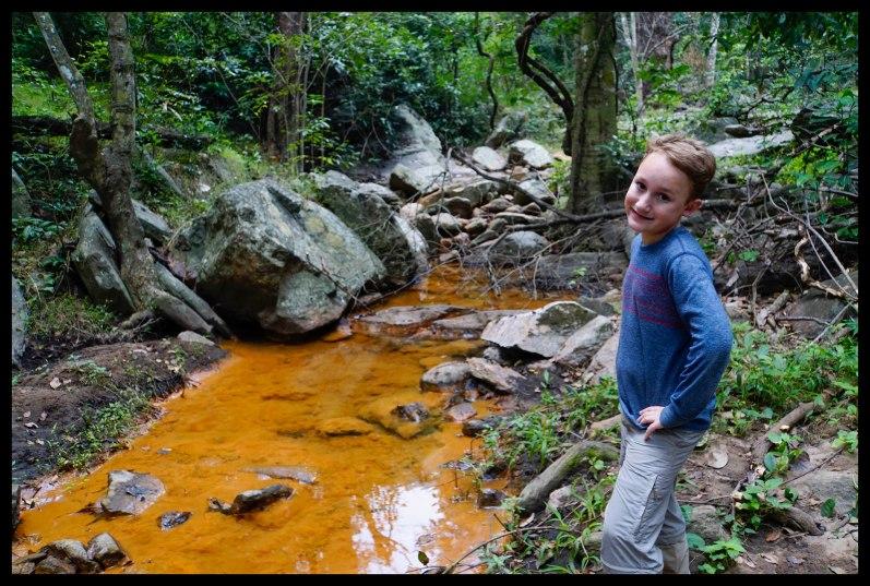The Orange Stream