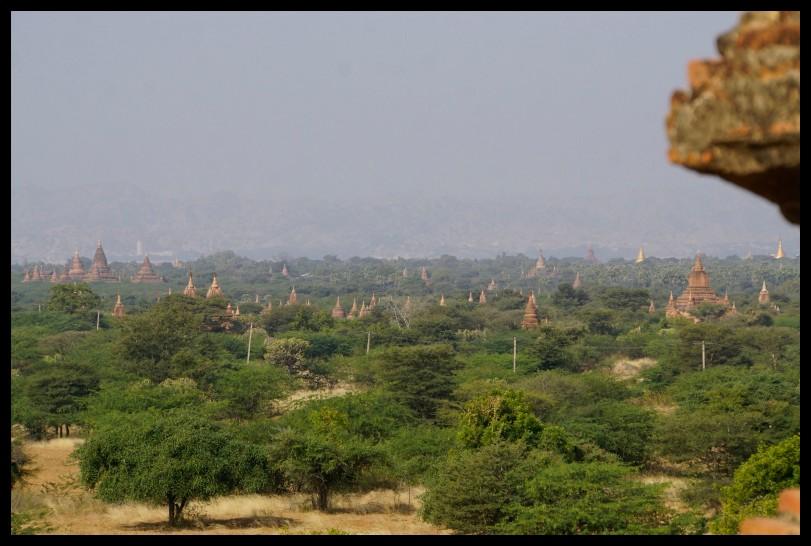 Countless pagodas