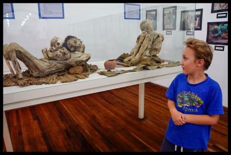 Mummies - Anthropology Museum