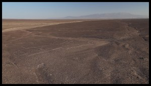A small percentage of the Nazca Lines. Most can only be seen from a plane.