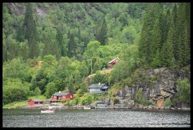 A cute Norwegian Fjord scene