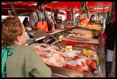 The fish market was really cool!