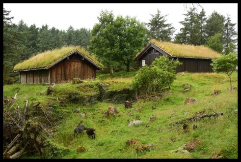Traditional Viking Homes
