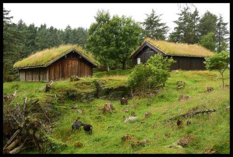 Traditional Viking Homes