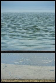 Omaha Beach Infinity Pool