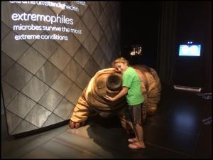 I love tardigrades!