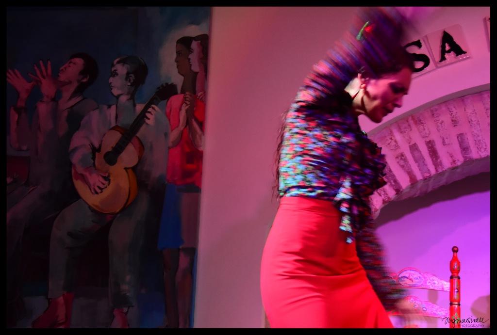 flamenco-fb