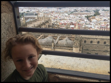 The view of Sevilla from the cathedral.
